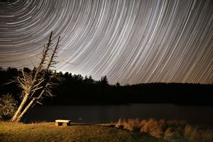 Bass Lake Star Trails