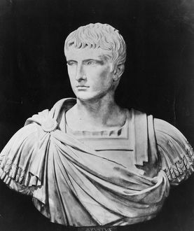 Bust Of Augustus