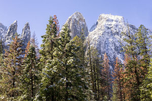 Cathedral Rocks covered with snow, Yosemite National Park, California, USA