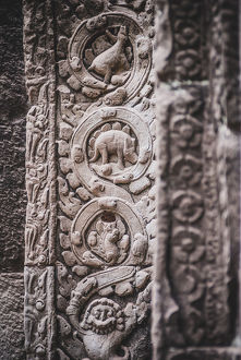 The close up of stone carving of Stegosaurus dinosaur inside Prasat Ta Prohm, Cambodia