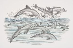 Cross-section underwater view of dolphins swimming and leaping over water surface