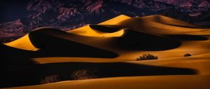 Death Valley Sand Dunes in Last Light