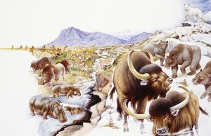 Different types of mammals gathered together on rugged landscape