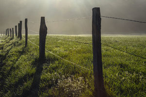 Fence in Cades Cove at sunrise, Great Smoky Mountains National Park, Tennessee, USA