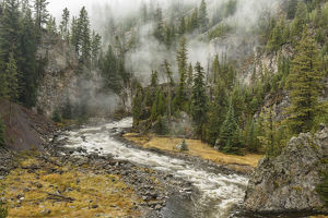 Firehole River and steam, Firehole Canyon, Yellowstone National Park, Montana, Wyoming