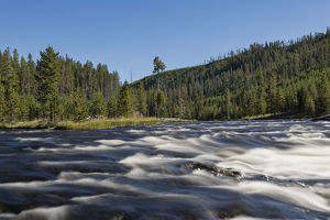 Firehole River and Yellowstone National Park on sunny day, Wyoming, USA