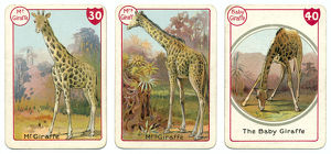 Three giraffe playing cards Victorian animal families game