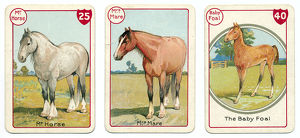 Three horse cards Victorian animal families game