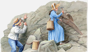 Illustration of two 19th Century children using hammers to remove fossils from rock