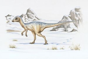 Illustration of Leaellynasaura which lived in polar regions