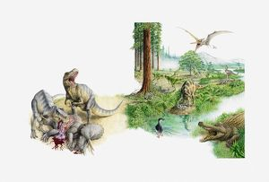 Illustration of prehistoric scene showing various dinosaurs, Tyrannosaursus eating
