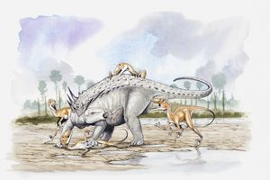 Illustration of a Sauropelta under attack by a pack of Deinonychus theropod dinosaurs
