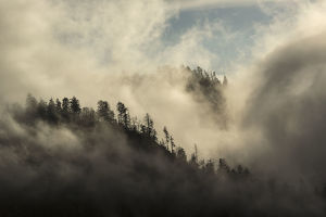 Landscape with forest and clouds, Morton Overlook, Great Smoky Mountains National Park