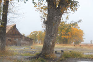 Moulton Barn at Mormon Row on a rainy autumn day in Grand Teton National Park, Wyoming