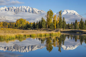 Mt. Moran and Teton Range reflecting in channel of Snake River, Schwabacher Landing