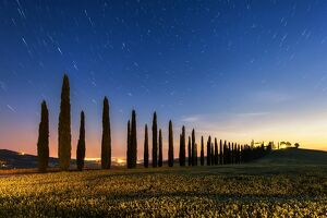 travel/photographer collections tonnaja travel photography/night tuscan fields