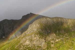 nature wildlife/anton luhr photography/rainbow lofoten northern norway norway scandinavia
