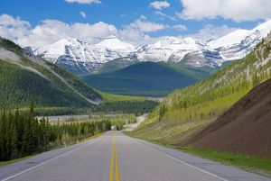 Road in the Canadian Rocky Mountains, Alberta, Canada