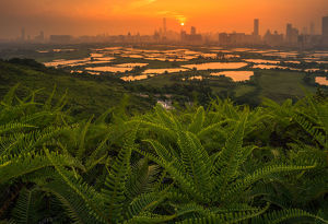 travel imagery/travel photographer collections coolbiere landscapes/shenzhen skyline looking hongkong country