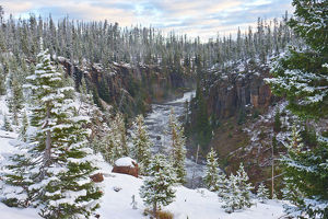 Snowy landscape with Lewis River, Yellowstone National Park, Wyoming, USA