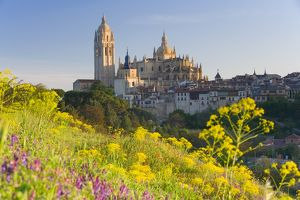 Spain, Segovia, Segovia Cathedral, field in foreground