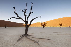Sunrise at Dead Vlei, Sossusvlei, Namibia