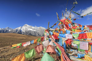 travel/unesco world heritage/tibetan prayer flags foreground jade dragon snow