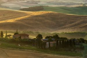 travel/photographer collections tonnaja travel photography/tuscany field summer season