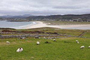 View from Horn Head over Dunfanaghy, County Donegal, Ireland, Europe