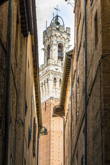 travel/photographer collections chiara salvadori outdoor travel photography/view torre del mangia siena