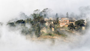 A Village in the fog