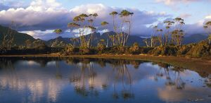 Alpine tarn near Mount Gould,