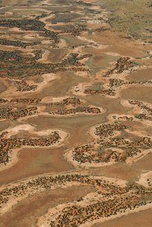 Claypans and spinifex-covered dunes