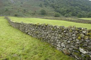 A drystone wall in upland pasture.