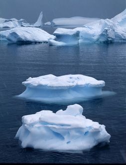 Icebergs in the rain