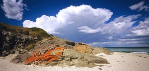 Lichen-covered boulders on beach,