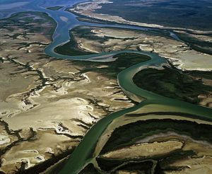 McArthur River Delta, Carrington Channel,