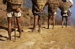 Porters on the trail, with T-shaped walking sticks, used to support the load at frequent