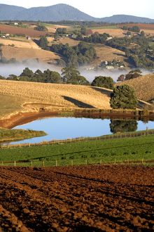 Rural scene of farmland planted with vegetable crops,