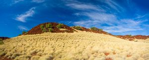 Spinifex-covered hill and the chocolate brown rocks characteristic of the Park.