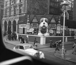 Advertising : a Hennessay Cognac diplay featuring the St Bernard dog on the corner