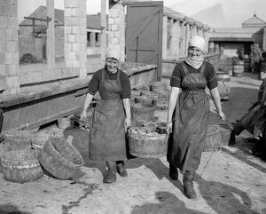 Herring Fishery at Great Yarmouth , Norfolk , England