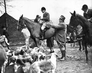 An invitation meet of the East Sussex Foxhounds was held today at Court Lodge Farm