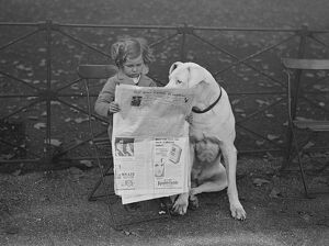 'Nero' a Great Dane and very well known in Hyde Park, shares a newspaper