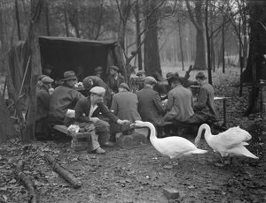 Workmen on their tea break feeding the swans during the reconstruction of the gardens