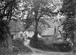 Cottages below the church, Ruan Lanihorne, Cornwall. Around 1900