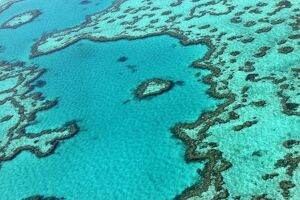 AUSTRALIA-CONSERVATION-ENVIRONMENT-BARRIER REEF