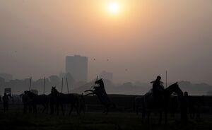 INDIA-WEATHER-FOG-HORSES