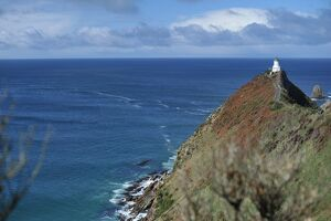 NEW ZEALAND-LIGHTHOUSE-NUGGET POINT