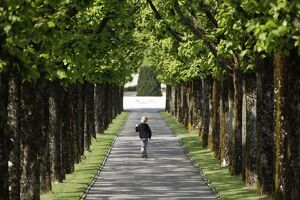 This photo taken on May 1, 2014, shows a young boy walking on a path lined with trees